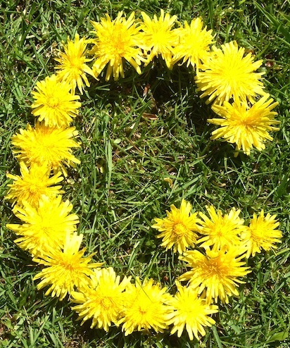 Post image for Dandelion Play – 10 Ideas