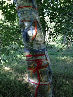 Tree trunk wrap