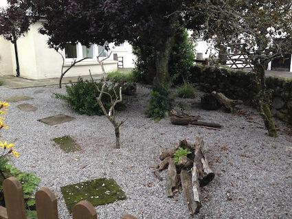 Bird Garden 1