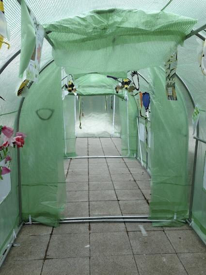 Polytunnel display