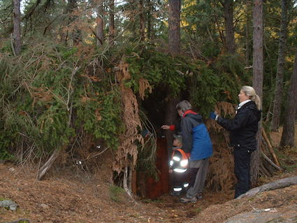 Swedish forest shelter