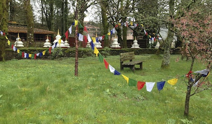 Prayer flags 5