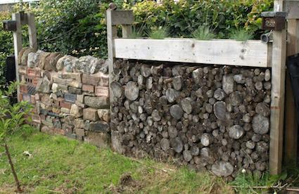 Alfreton bug walls