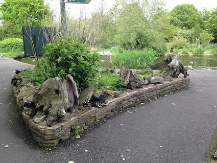 Minibeast stumps