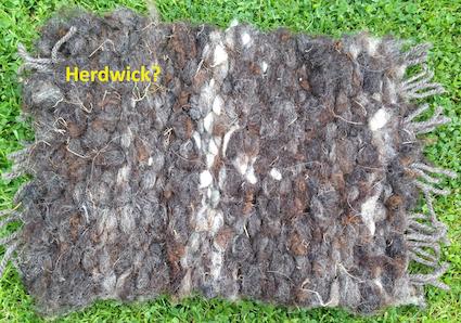 Herdwick 2