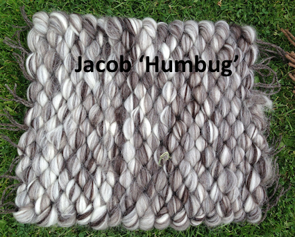Jacob Humbug