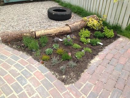 Maisie's Garden 16