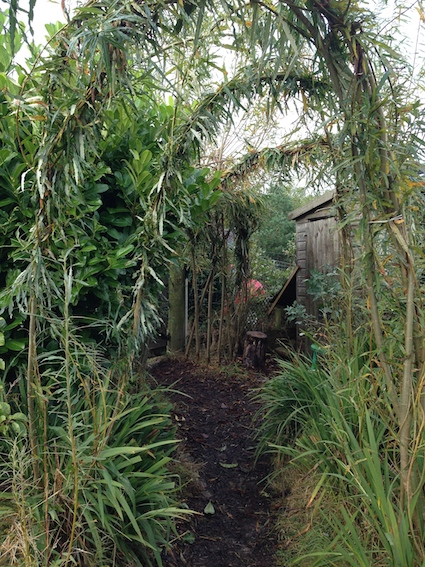 Willow entrance