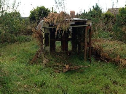 Pallet shack 2