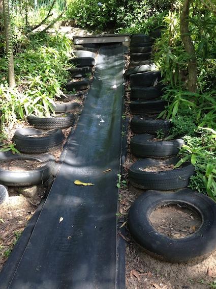 Oz slide 8