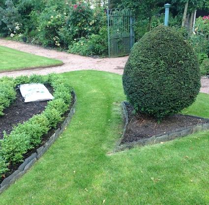 Shape garden 9