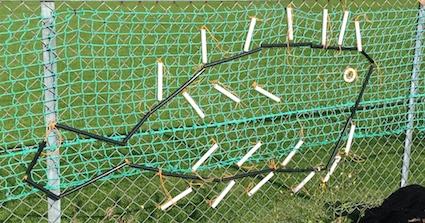 Inverallochy Fishnets 2