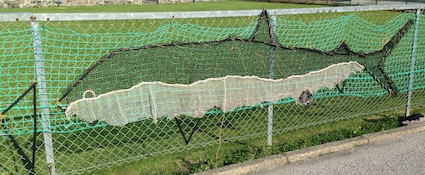 Inverallochy Fishnets 3