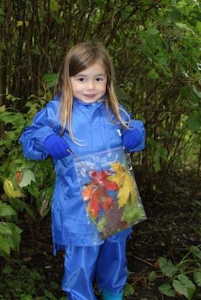 Post image for Tree Identification Scavenger Hunt