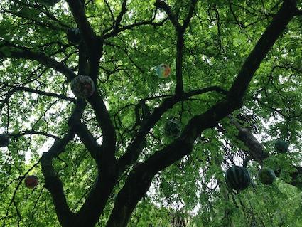 Cruickshank Botanic Garden Art 4