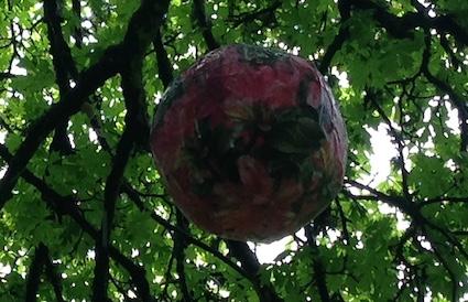 Cruickshank Botanic Garden Art 5
